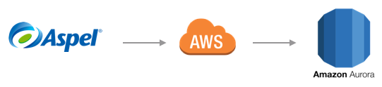 Aspel SAE en Amazon Web Services